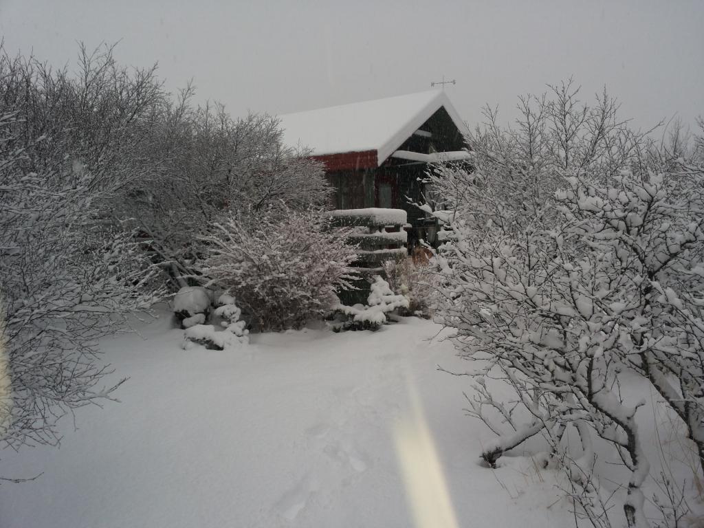Flankastaðir in the winter time