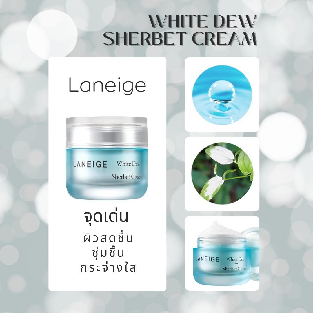 5. Laneige White Dew Sherbet Cream