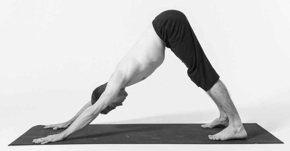 Tư thế chó cúi mặt Down Dog - Bài tập yoga giảm béo bụng