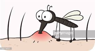 Image result for parasitism cartoon