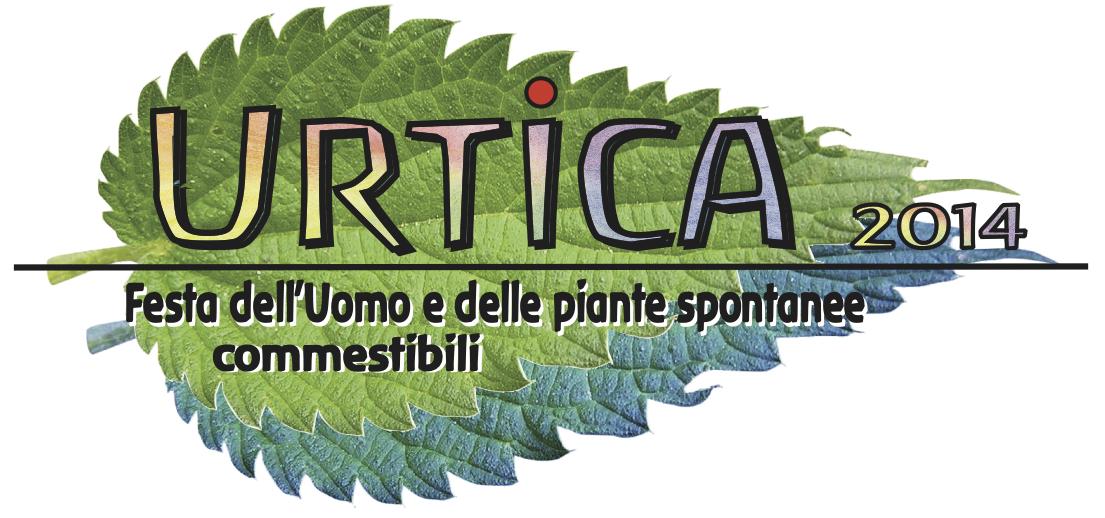 Urtica05.jpg