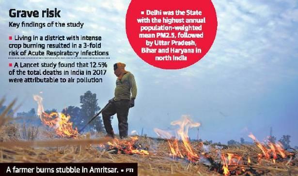 Crop burning raises risk of respiratory illness threefold, says IFPRI study