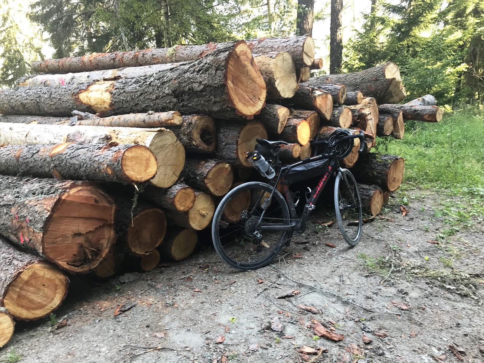 Bicycle ride Breithorn - log pile and bike