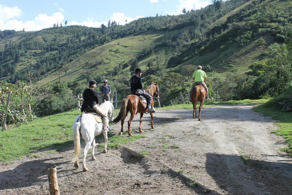 Nono Hacienda San Martin Caballos.jpg
