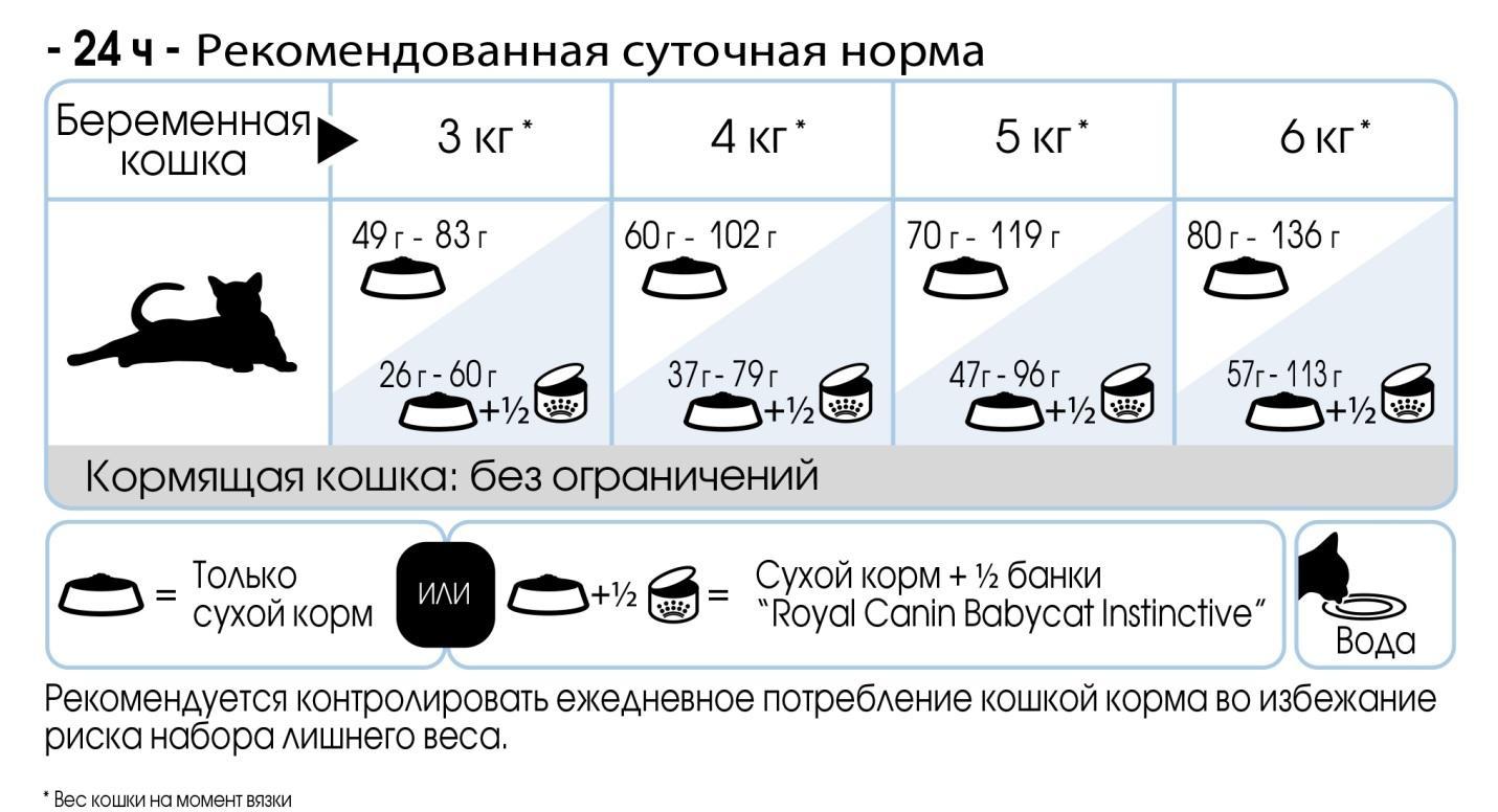 E:\RC\E-commerce\Online merchandising\Product packshots&info for customers\Queen\QUEEN_ feeding table_ru_jpg.jpg