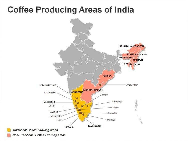 Image result for coffee cultivation in india