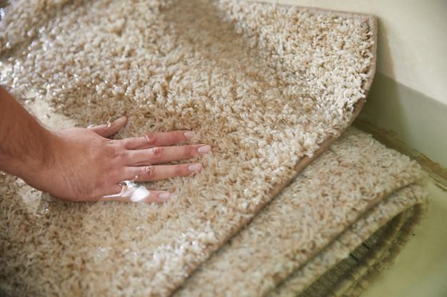 higienização correta de tapetes e carpetes