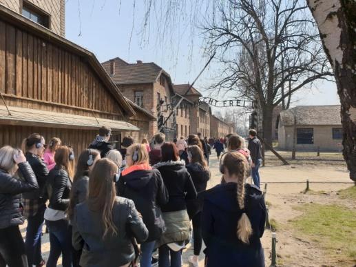 Erfahrungsbericht: Besuch in der polnischen Partnerstadt Wieliczka