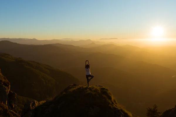 Mindfulness Workshop (A Comprehensive Guide)