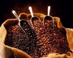 咖啡豆推薦購買新鮮烘焙48小時