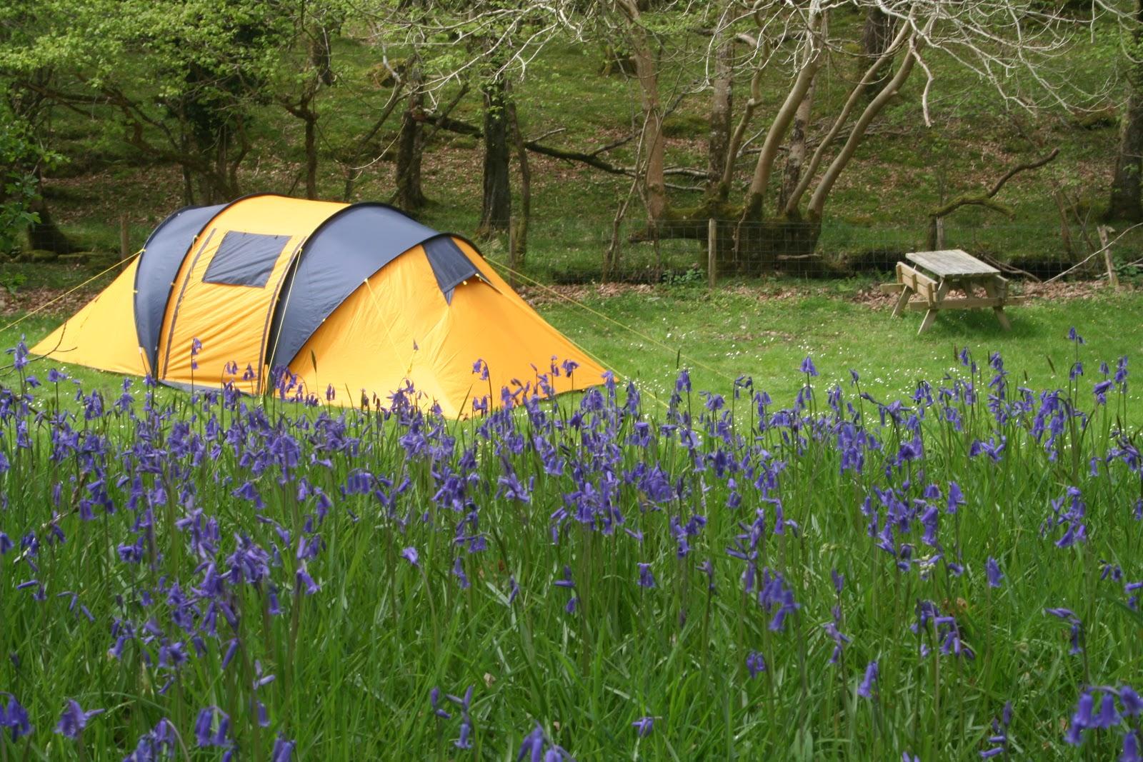 Dinas_camping_-_geograph.org.uk_-_1731943.jpg