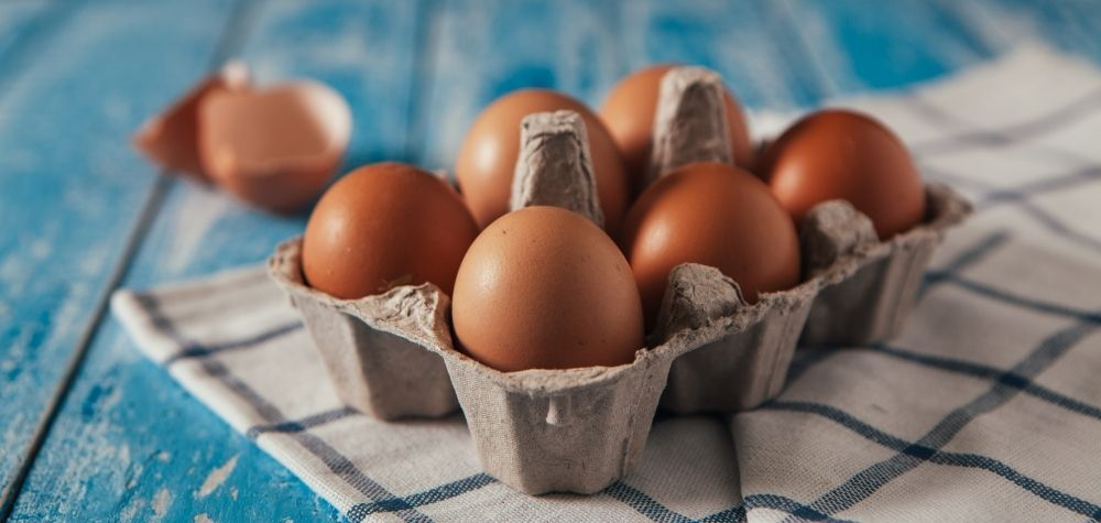 Cracking the Date Code on Egg Cartons | UNL Food