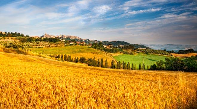 Riduzione contributiva per l'assicurazione dei lavoratori agricoli