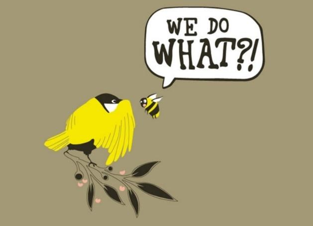 Image result for the birds and the bees
