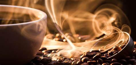 Top 5 Reasons to Try Tayst Coffee