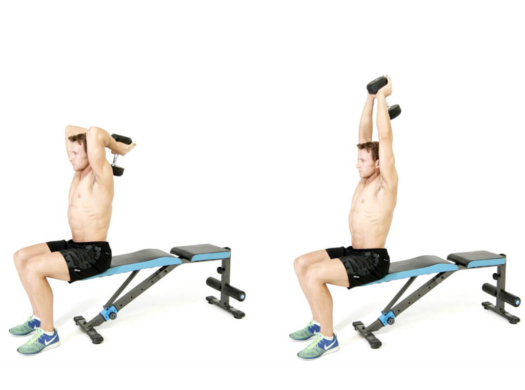 Best Arm Exercises: The Overhead Extension Exercise