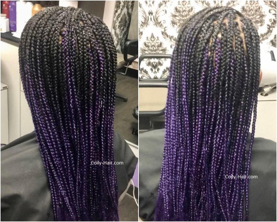 box braids hair colors box braids gallery