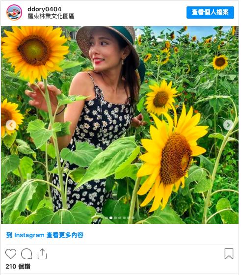 2020 暑假 景點 台灣旅遊 賞花