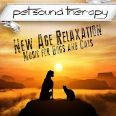 New Age Relaxation - Music for Dogs and Cats