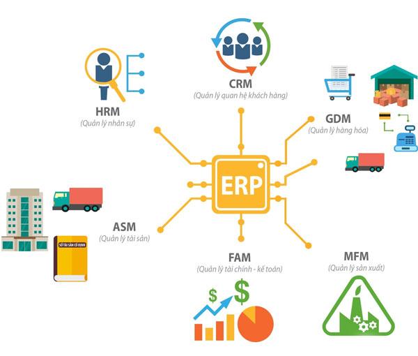 Mô hình cấu trúc của ERP cùng những phân hệ chính