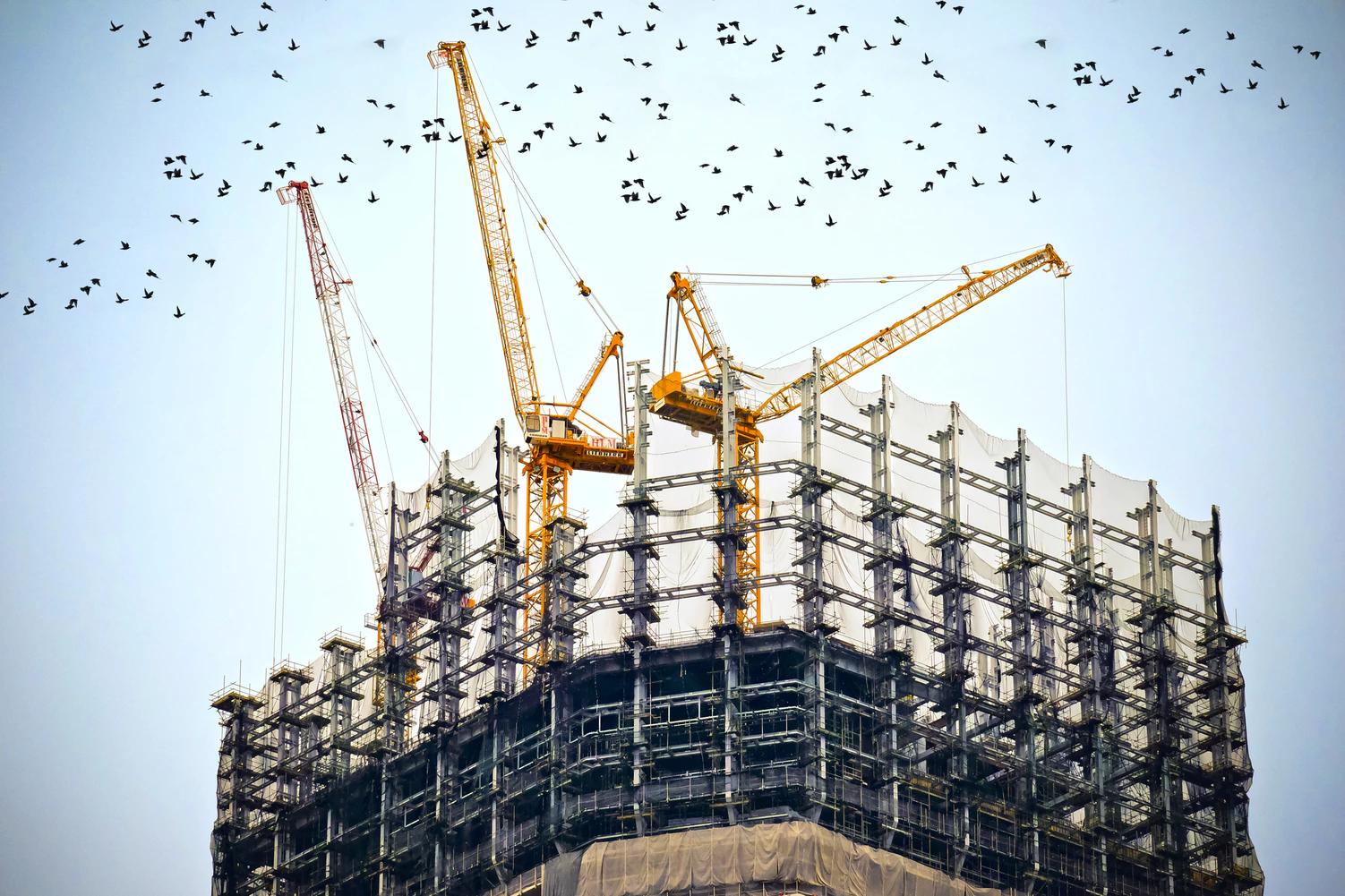 3 Dicas na hora de Construir - Grupo Scaini