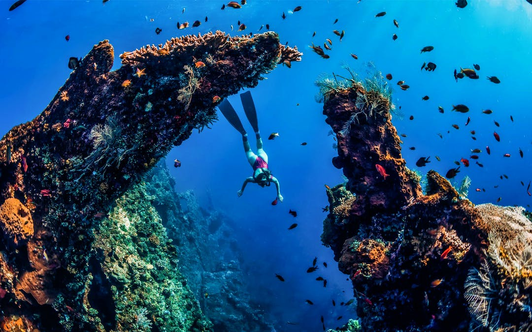 Amed Diving Bali, Japanese Shipwreck