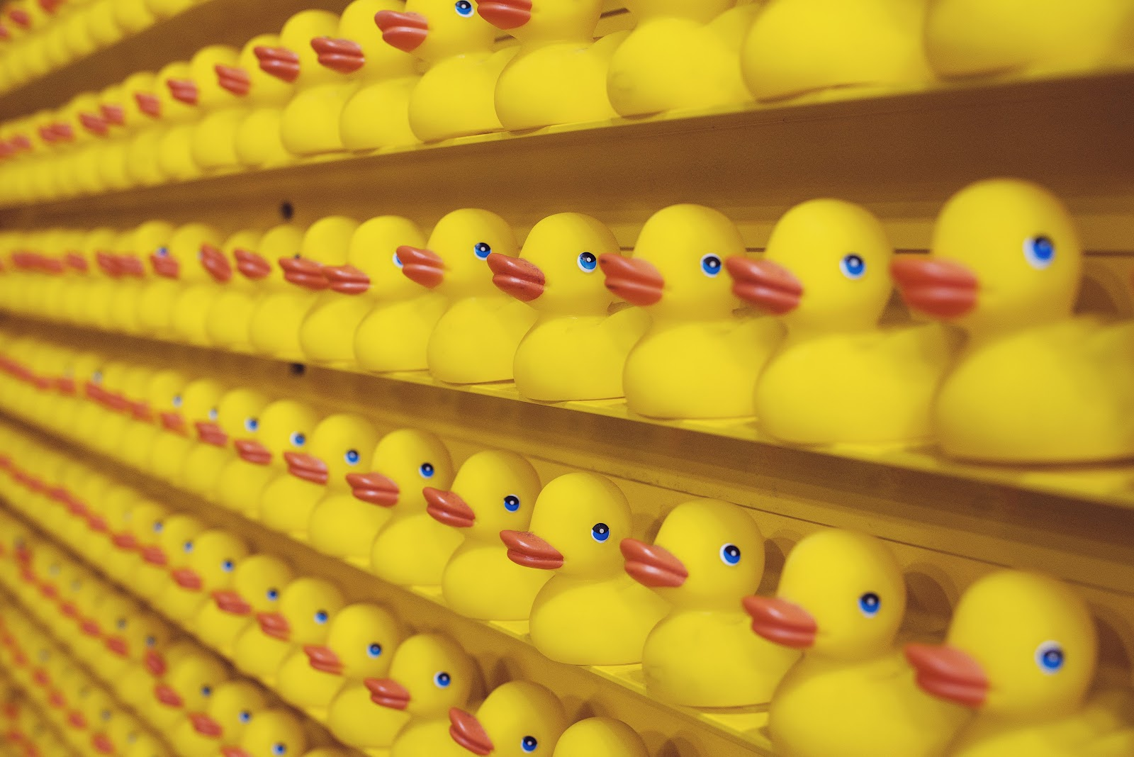 Wall of yellow rubber ducks - overcome a mental block by talking through it | PulseBlueprint