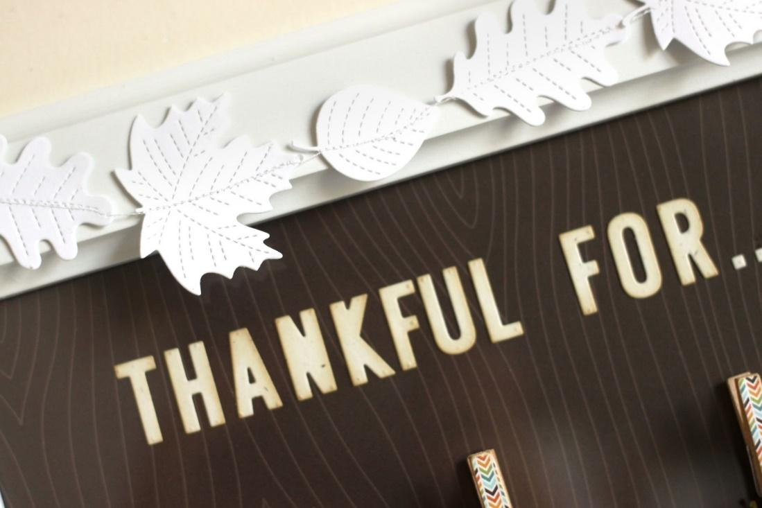 Image result for 5 reasons to be thankful