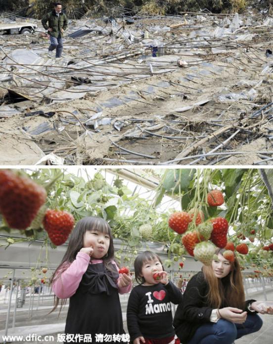 Image result for nước Nhật hồi phục sau động đất