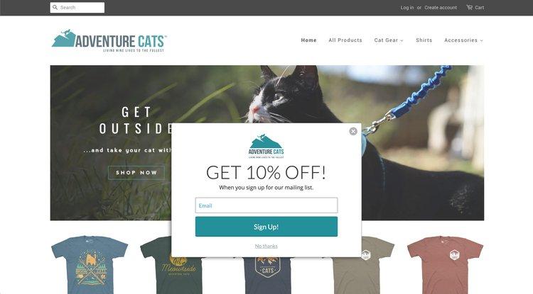 ecommerce popup discount code
