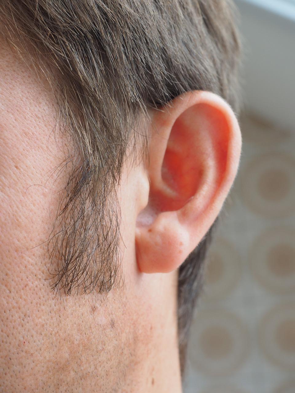 ear-1355652_1280.jpg