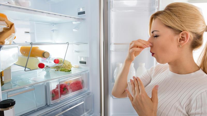 5 ตู้เย็นขนาดเล็ก คุณภาพดี ที่น่าใช้ คัดมาเอาใจสายมินิมอลโดยเฉพาะ !9