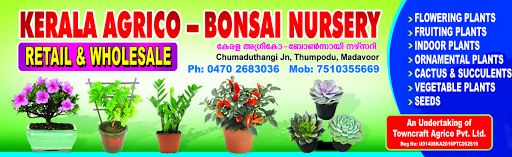 Kerala Agrico Bonsai Nursery - We are selling various plant root