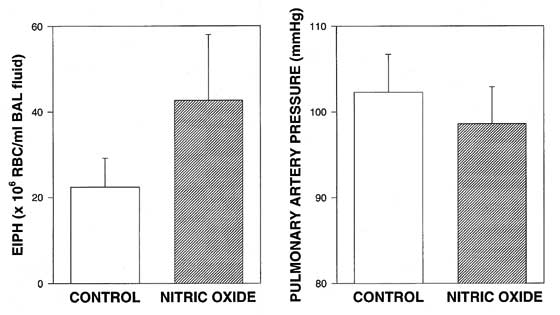 Nitric oxide breathing (80 ppm) significantly increased the severity of exercise-induced pulmonary hemorrhage in 5 racehorses run to volitional fatigue at 15 m/s. Pulmonary artery pressure was significantly reduced [95,100].
