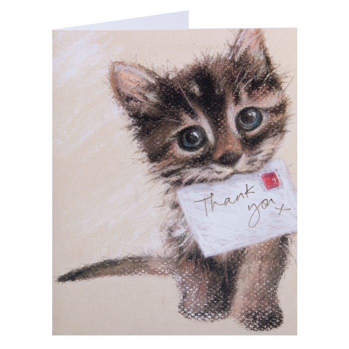 Clintons' Cute Cat with Thank You Note Card