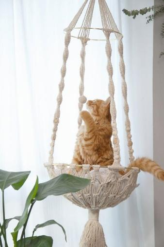 macramê em formato de suporte com gato dentro.