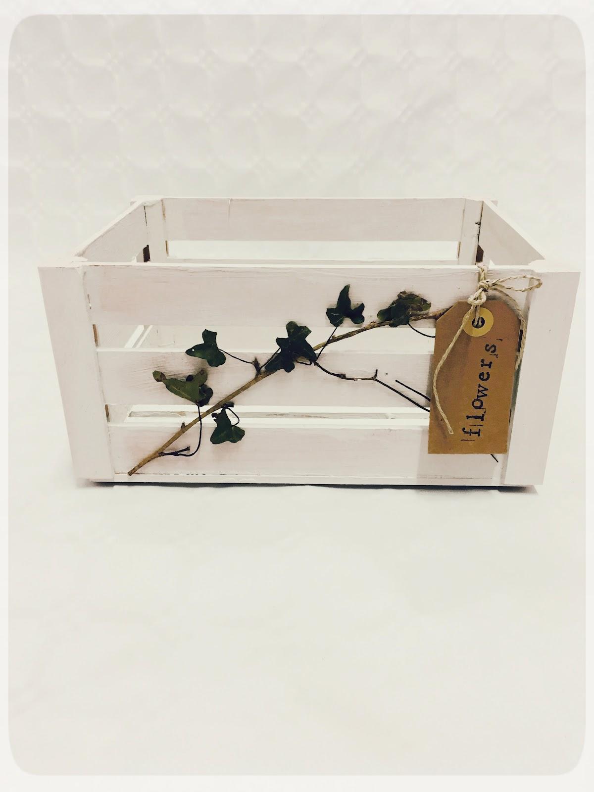 REinventa12_caja botanical g.jpg