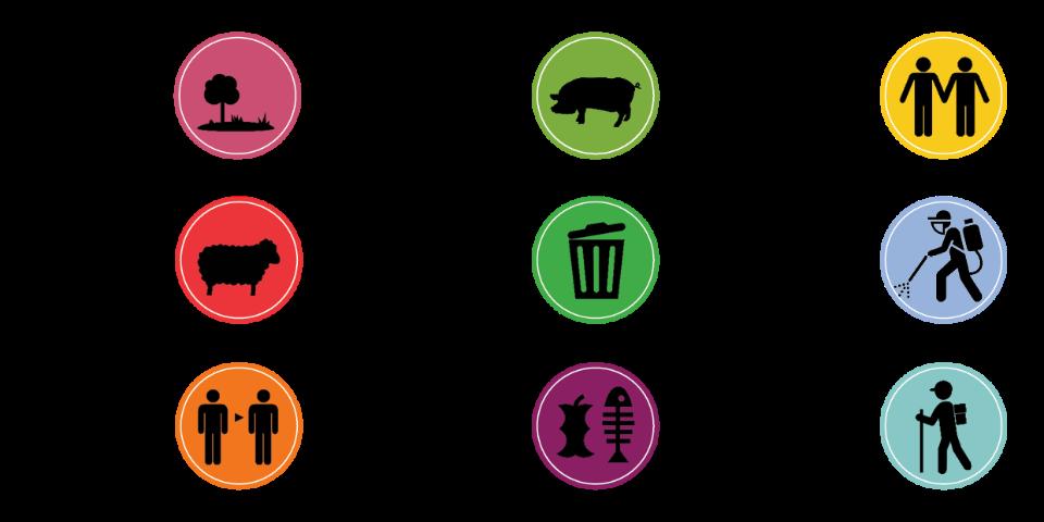 סוגיות מרכזיות באסטרטגיה של צוות קיום משותף של טבע, חקלאות ואדם