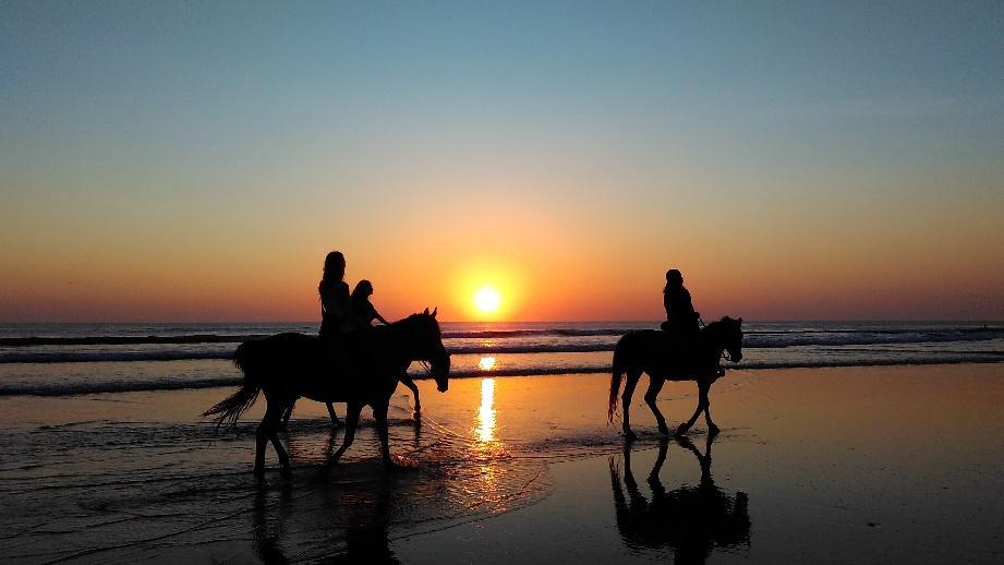 Ride a Horse at seminyak bali beach