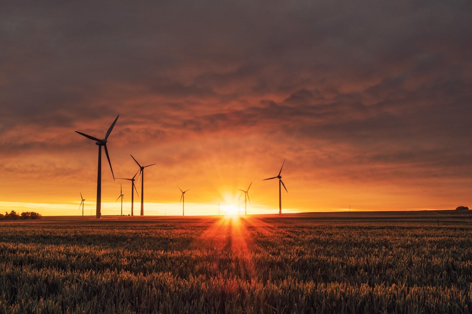energías renovables eólica