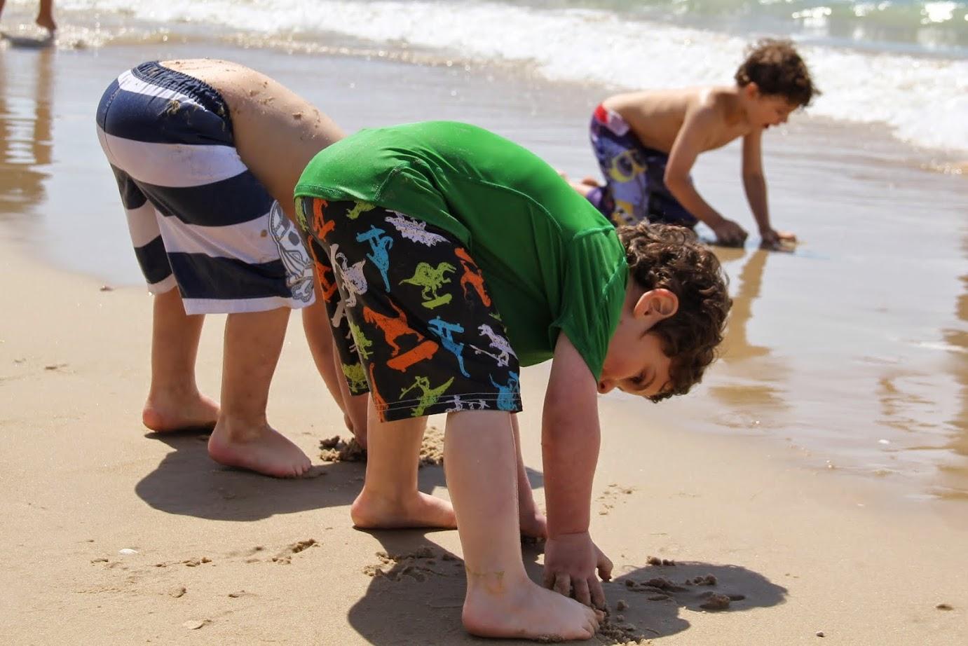 אוספים חול להשתוללות בחוף בית ינאי
