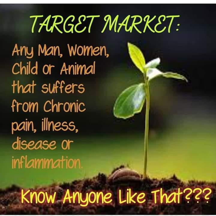 Target Market: Any Man, Woman, Child or Animal that suffers from chronic pain, illness, disease or inflammation.