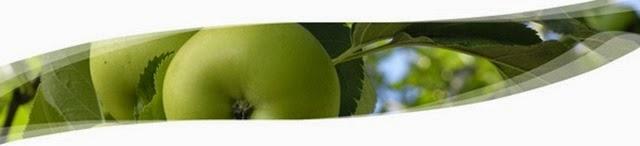 Phytocelltec,สเต็มเซลล์จากแอปเปิ้ล