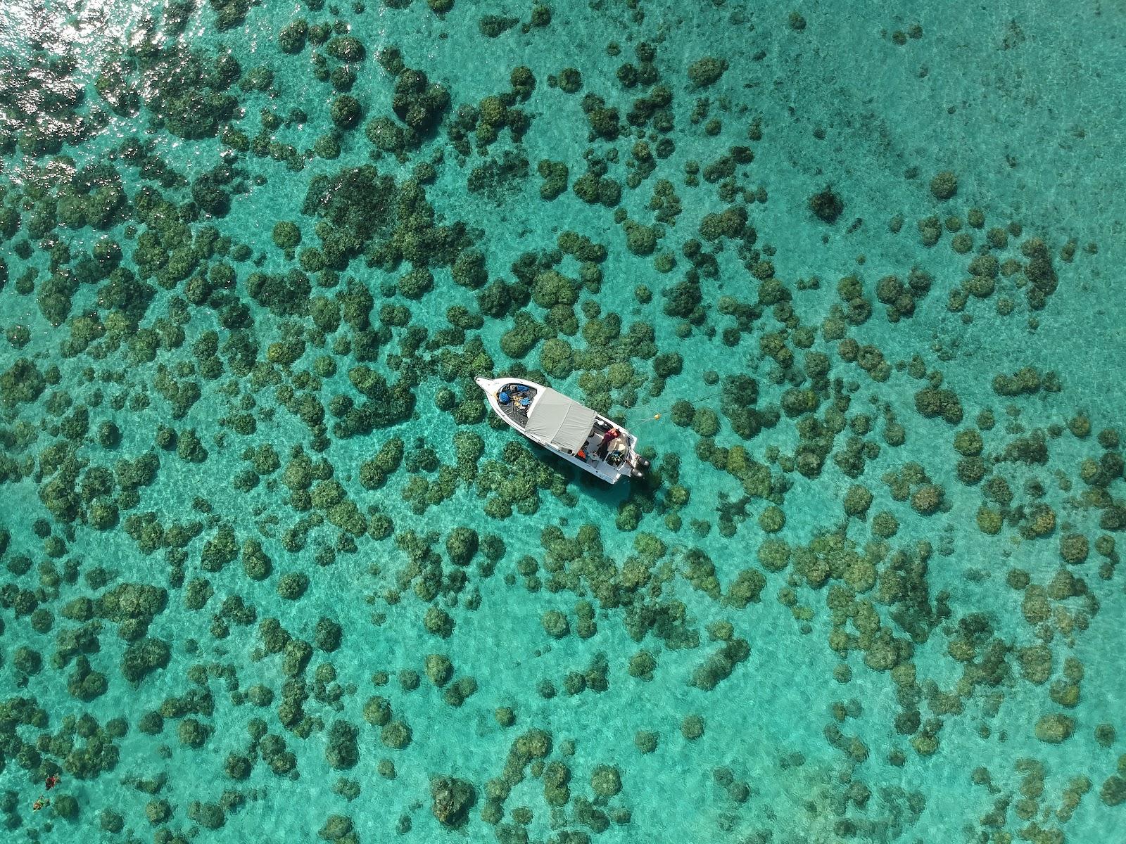 Drone shot corail