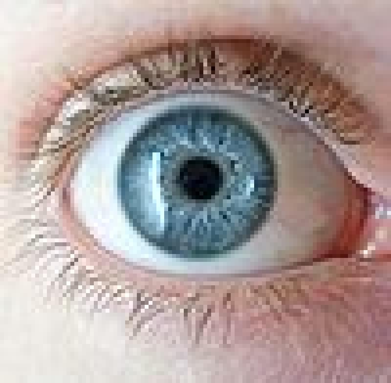 Llojet e ngjyrave të syve - Njerëzit kanë qenë prej kohësh të magjepsur me ngjyrën e syve; në fund të fundit, sytë vijnë në një gamë të gjerë nuancash. Saktësisht çfarë ngjyre janë sytë tuaj? Hazel-ish? Blu-gri-jeshile? Blu me njolla kafe? E gjelbër me njolla gri?
