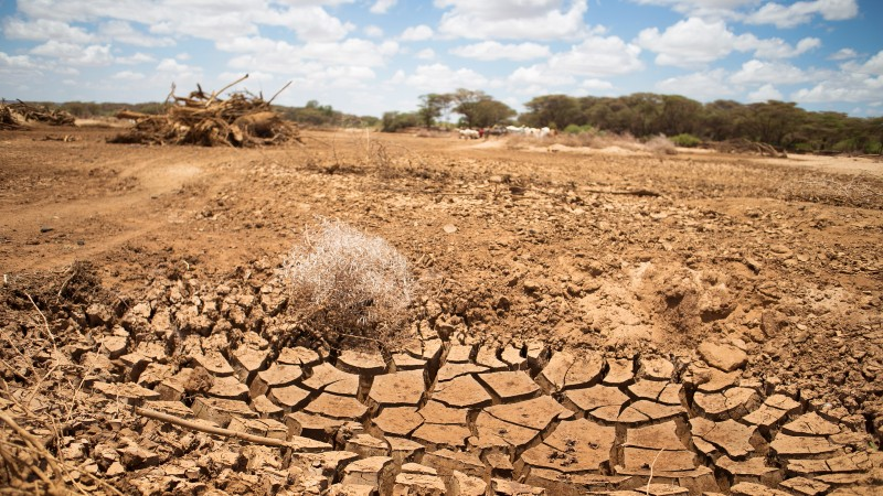 'Least developed countries urge climate finance help at UN Security Council