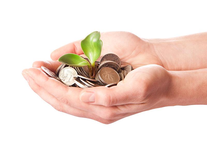 800px-Investing_money.jpg