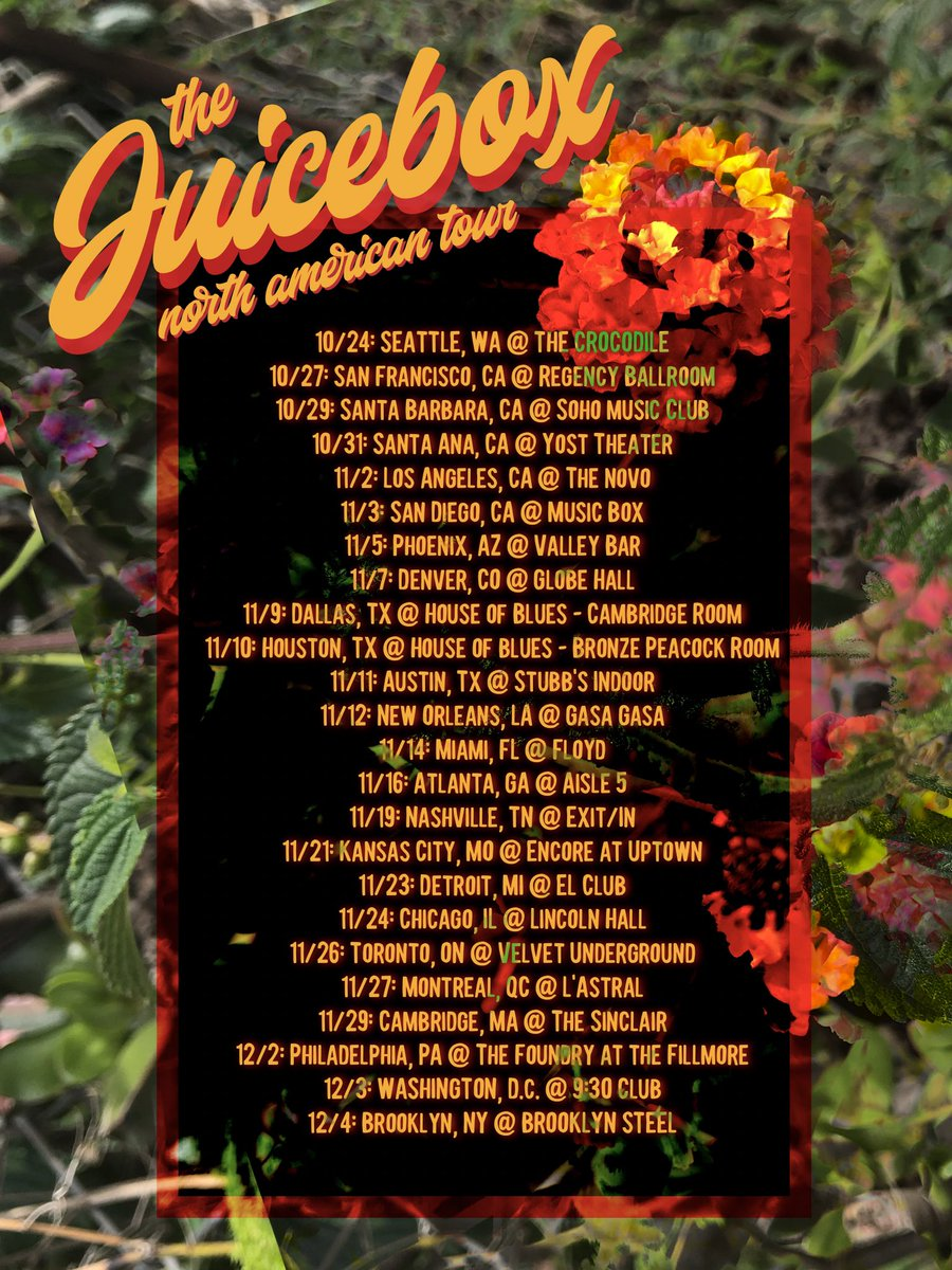 Image result for mac ayres juicebox tour