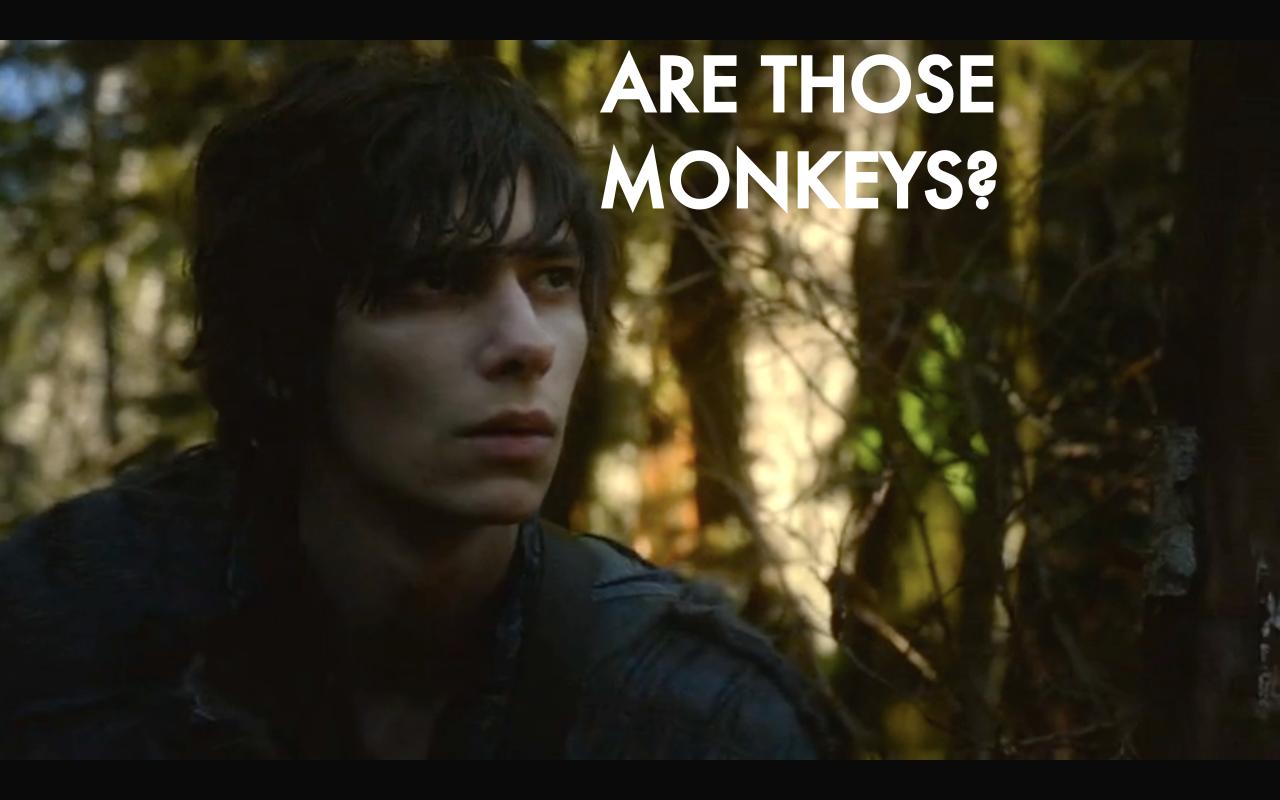 monkeyspng