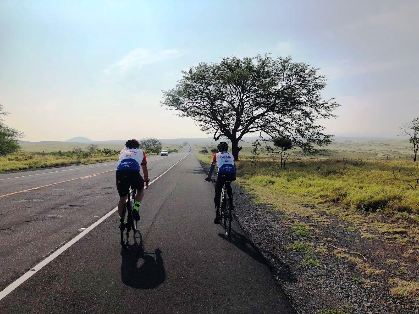 Bicycling up Mauna Loa - PJAMM cyclists on bikes riding on Waikoloa Road - tree on road